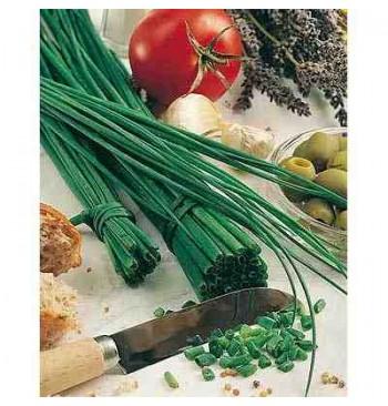 Cebollino ecológico 2g