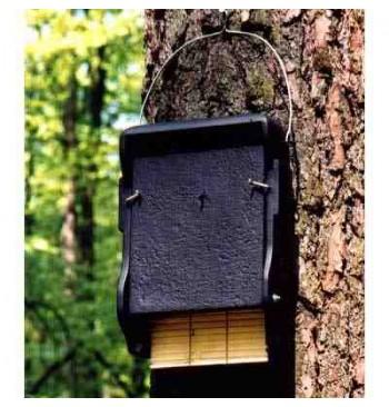 1FF Refugio para murciélagos