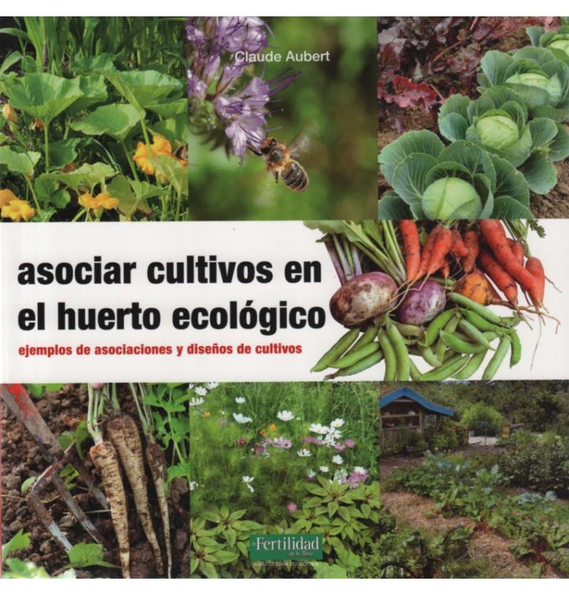Asociar cultivos en el huerto ecol gico biohuerto Asociaciones de cultivos favorables