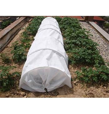 Tunel de cultivo blanco