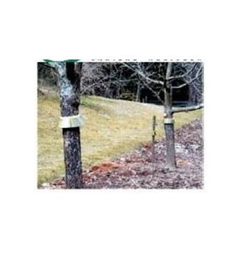Barrera anti insectos para troncos