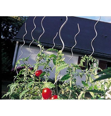 Tutor spiral para tomates