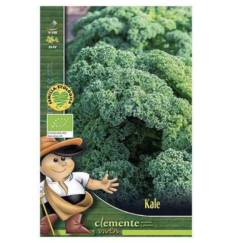 Col Kale (col rizada)
