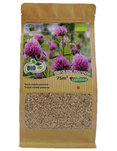 Trébol violeta (Trifolium pratense) 75m2+vermiculita