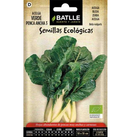 Acelga verde penca ancha ecológica 100g