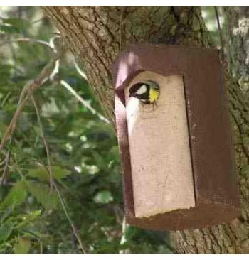 1B-32 Caja nido para carboneros y herrerillos