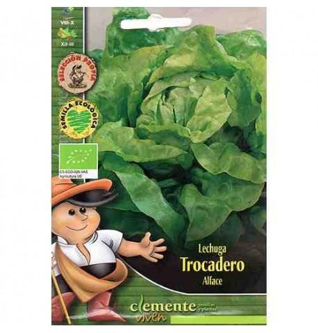 Lechuga Trocadero ecológica 3g