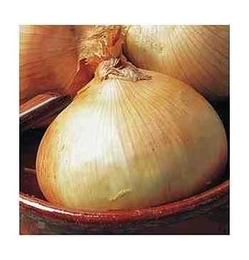 Cebolla dulce de Fuentes ecológica 3g